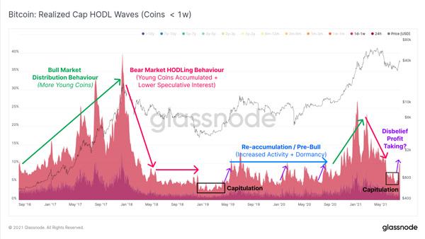 نمودار امواج سود حاصل از هودل (Realised Cap HODL waves) | همتاپی