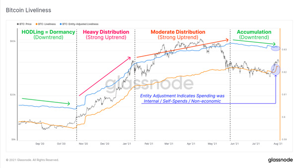 نمودار پویایی بیت کوین | همتاپی