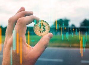 پلن بی: قیمت بیت کوین در ماه اکتبر به 63 هزار دلار میرسد | همتاپی