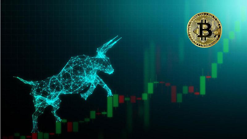 با وجود افت بازار، بیت کوین مثل همیشه صعودی است