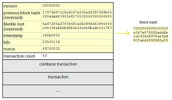 ساختار یک بلاک بیت کوین | همتاپی