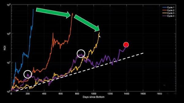 نمودار بازدهی سرمایه | همتاپی