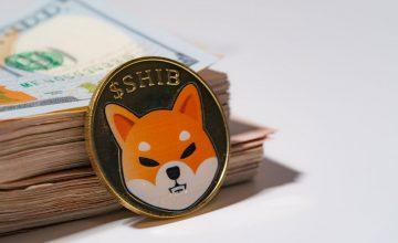 افزایش 9 درصدی تعداد آدرسهای کیف پول شیبا اینو (Shiba Inu) طی دو هفته | همتاپی