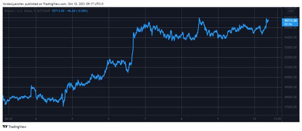 نمودار قیمت بیت کوین به دلار   همتاپی